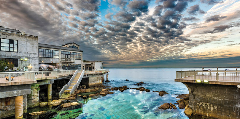 Big Little Lies - Monterey Bay Aquarium